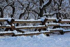 Snow Covered Fence Stock Photo