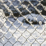 Snow covered fence Stock Images