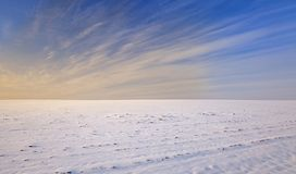 Snow-covered field Stock Photography