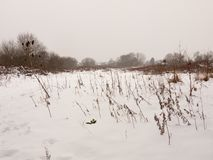 Snow covered field meadow outside uk nature white winter field. Essex; england; uk Royalty Free Stock Photos