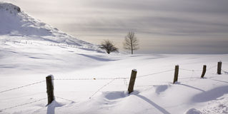 Snow covered field (Spain) Stock Images