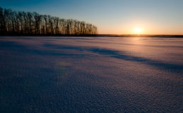 Snow-covered field at sunset Royalty Free Stock Image