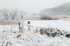 Snow-covered fields and lake. Landscape Stock Image