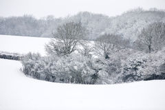 Snow covered fields Royalty Free Stock Photos
