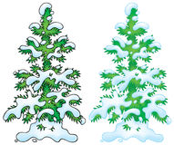 Snow-covered fir royalty free illustration
