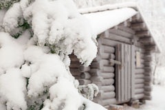 Snow-covered fir branch on a background of the hut. Finnish Lapland Stock Photos