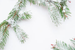 Snow-covered fir branches and Christmas decorations with space for text Stock Photos