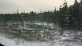 Snow-covered fir and high-speed train (POV) Stock Image