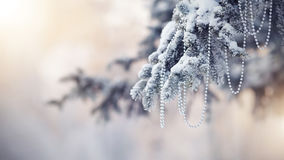 Snow-covered fir-tree branch with Christmas-tree decoration Royalty Free Stock Photography