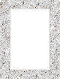 Snow covered fir tree branches. On a white background.  Abstract Christmas frame Royalty Free Stock Photos