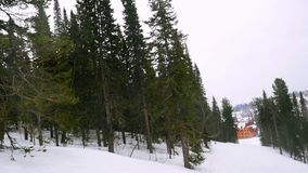 Snow covered fir trees in mountains during snowfall on cloudy day. 1920x1080 stock video footage