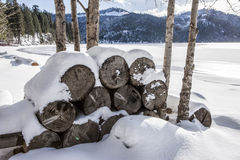 Snow covered firewood by lake. Stock Photos