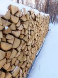Snow covered firewood Royalty Free Stock Images