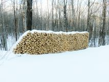 Snow covered firewood Royalty Free Stock Image