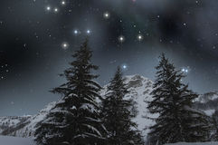 Snow covered firs under a starry sky. Winter landscape of snowy mountain with firs under a starry sky royalty free stock photos