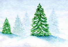 Snow covered firs. Winter landscape, snow-covered fir grove in the fog against a cloudy sky background, hand-painted watercolor illustration and paper texture Royalty Free Stock Photos
