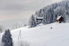 Snow-covered flank van heuvel, de winterbergen stock foto
