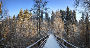 Snow covered footbridge. Panorama. Stock Photos