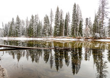 Snow covered forest along a winding Idaho river Royalty Free Stock Photography