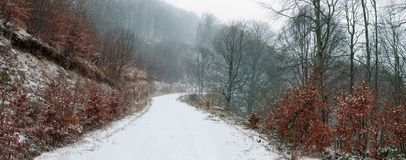 Snow covered forest road Royalty Free Stock Image