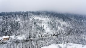 Snow covered forest. Winter landscape from above Royalty Free Stock Photos