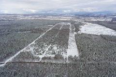 The snow-covered forest. In winter, view from above Stock Photography