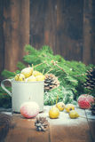 Snow-covered fruit Royalty Free Stock Photography