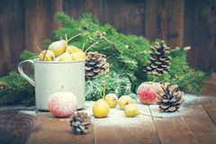 Snow-covered fruit Stock Image