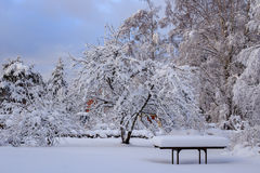Snow covered garden table. Wooden table in garden with thick layer of snow Stock Photos