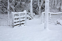 Snow covered gate and trees Royalty Free Stock Photos