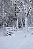 Snow covered gate in wood Royalty Free Stock Photos