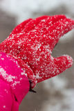 Snow covered glove Stock Photography