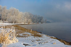 The snow-covered grass and trees on the river bank Royalty Free Stock Image