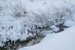 Snow covered grassy bank by a mountain stream in Wales Stock Images