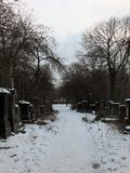 Snow covered gravestones along a path in the former woodhouse lane cemetrary in leeds now a park. In the university called st georges fields Stock Photo