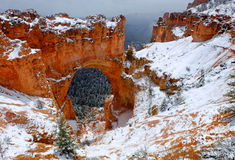 The Snow Covered Great Arch. Bryce Canyon National Park Stock Photography