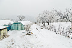 Snow-covered greenhouse. And winter landscape Royalty Free Stock Photography