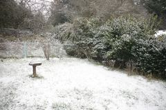 Snow Covered Ground in Backyard/Park Stock Images