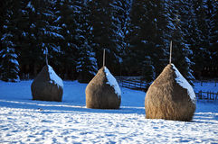 Snow covered haystacks at winter Stock Photos