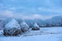 Snow covered haystacks. Winter rural scene in the mountains Royalty Free Stock Photo