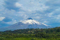 Snow covered hight volcano summit above the forest stock images