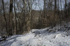 Snow covered hiking trail through forest stock images