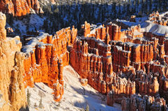 Snow covered Hoodoos in Bryce Canyon Royalty Free Stock Photos