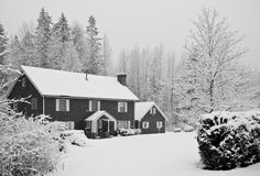 Snow covered house in forest. During winter Stock Photo