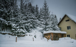 Snow-covered house. Wood and house in winter Royalty Free Stock Images