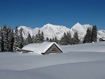Snow covered hut, trees and Mt  Saentis.  Royalty Free Stock Images