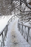 Snow-covered iron staircase with handrails. Metal staircase with handrails under the snow-covered tree in wintertime royalty free stock photography