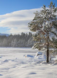 Snow covered lake Royalty Free Stock Image