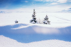 Snow covered lake after snowfall Royalty Free Stock Photo