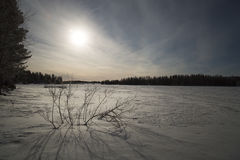 Snow Covered Lake in Sweden Royalty Free Stock Photos